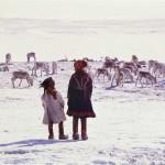 Foto av samer og reinsdyr på snødekt vidde.
