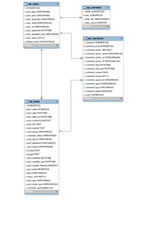 wp_users a jeho vztahy