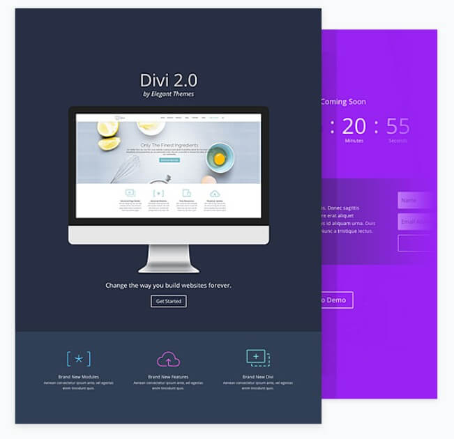 Divi landing pages