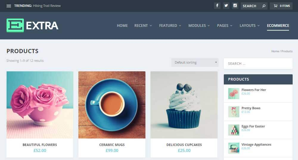 Extra WordPress šablona - elektronický obchod
