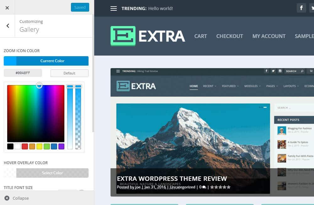 Extra WordPress šablona - moduly
