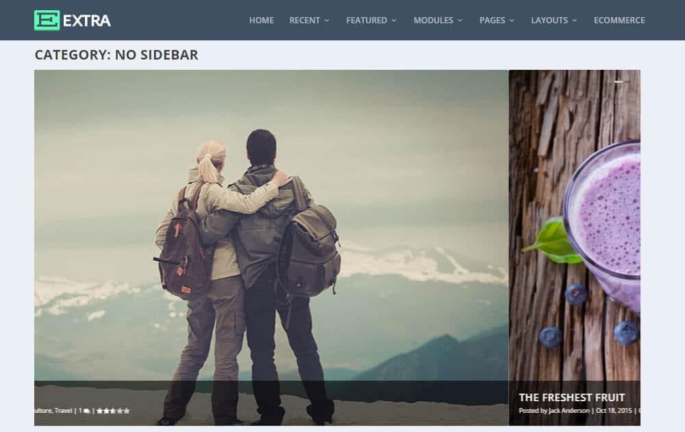 Extra WordPress šablona-bez postranního panelu