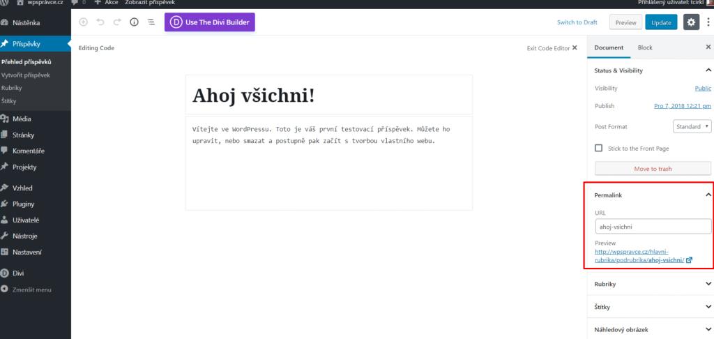 Příspěvek s rubrikou v URL